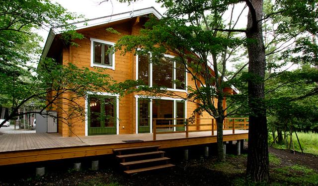 広大な吹き抜け空間を貫くアルミ製の螺旋階段が木の魅力を際立たせる