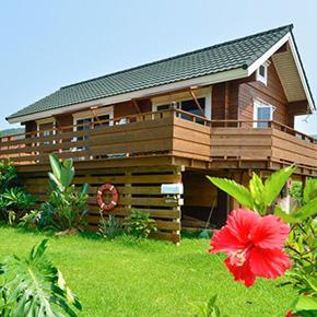 南の島に建つ国産杉の平屋ログハウス