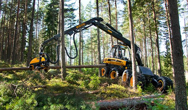 持続可能な森林の木材を使用