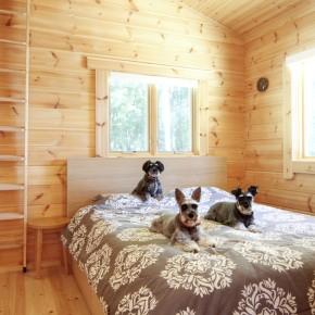 3匹の愛犬と暮らす、平屋ログハウス