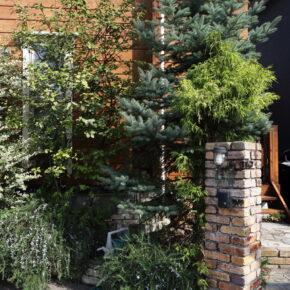 周囲は昔ながらの住宅地なので、樹種の異なる植栽が程よい目隠しとなって建物を街並みに調和させている