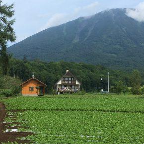 北海道真狩村にTALOログハウスの貸し別荘がオープン!