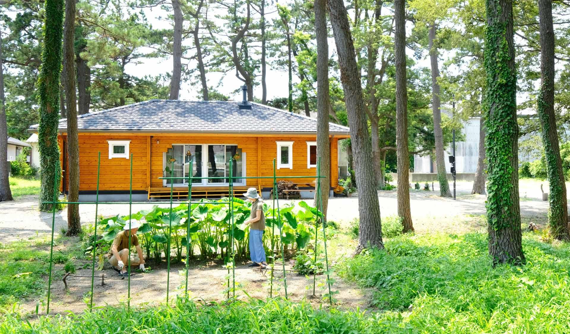 国産杉を使用した和風の平屋