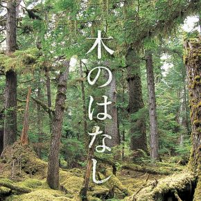 新しい「木のはなし」を公開しました!